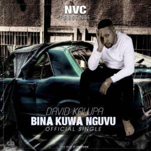 David Kalupa Elking Bina Kuwa Ngufu www Lwimbo com  mp3 image 300x300