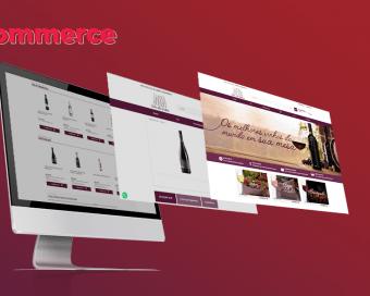 portfolio-site-lwk_vila-do-vinho_01