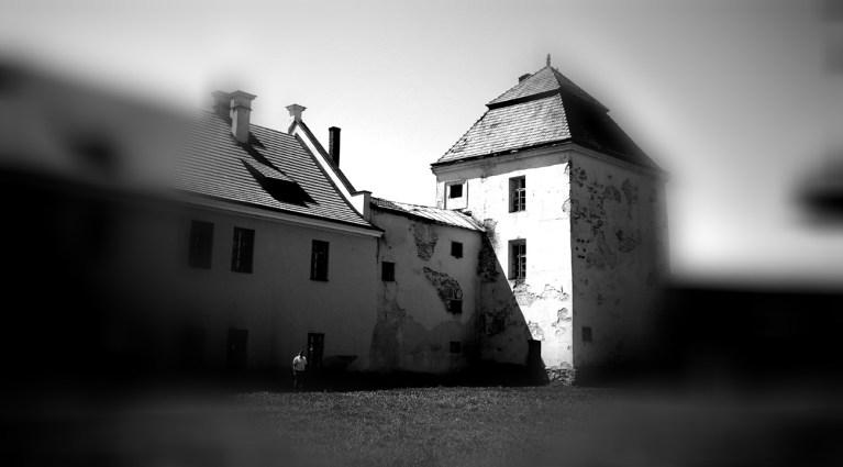 zamek w Żółkwi
