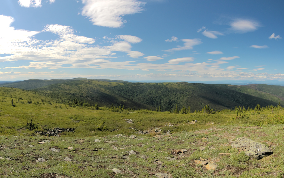 resized_DSC_3496-DSC_3499-CROP