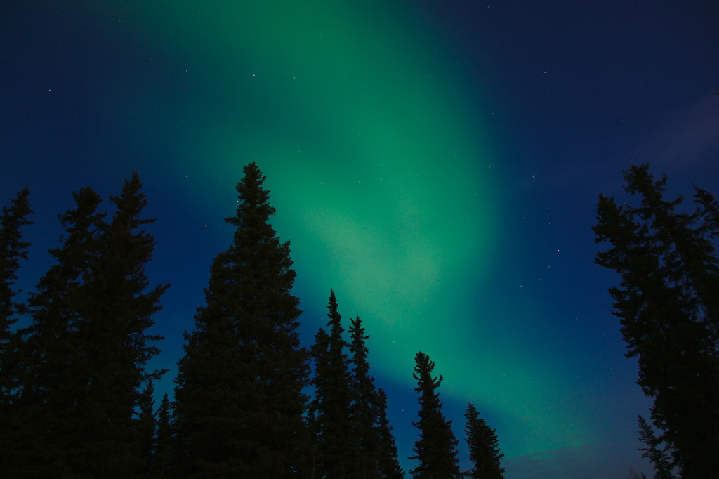 Aurora borealis in cobalt sky at twilight.
