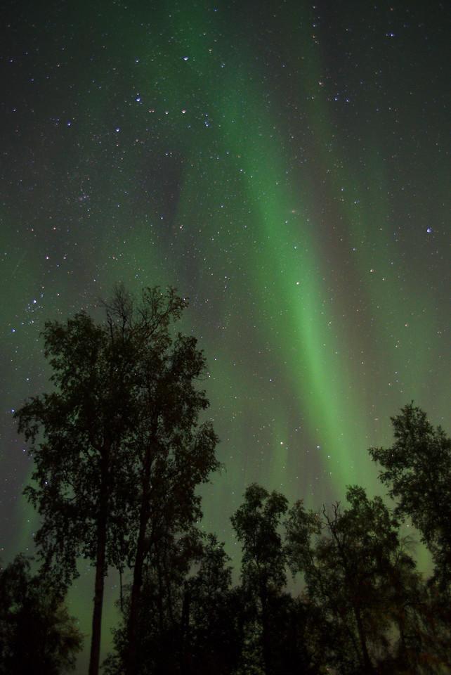 Aurora photograph taken with Nikon D750