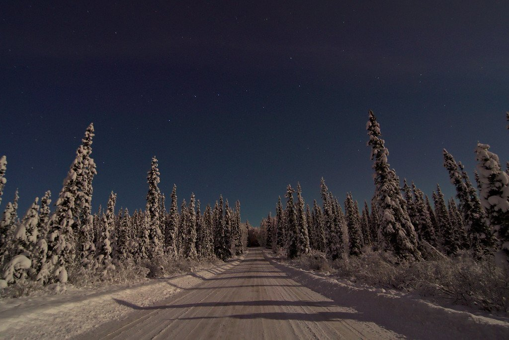 The big dipper over road through boreal forest. Very faint aurora on the horizon. North of Fairbanks, Alaska.