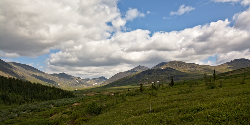 Nome Creek Valley in late spring