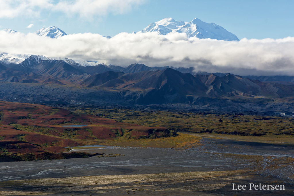 Gorgeous red landscapes over the Thorofare River and yellow vegetation-covered Muldrow Glacier.