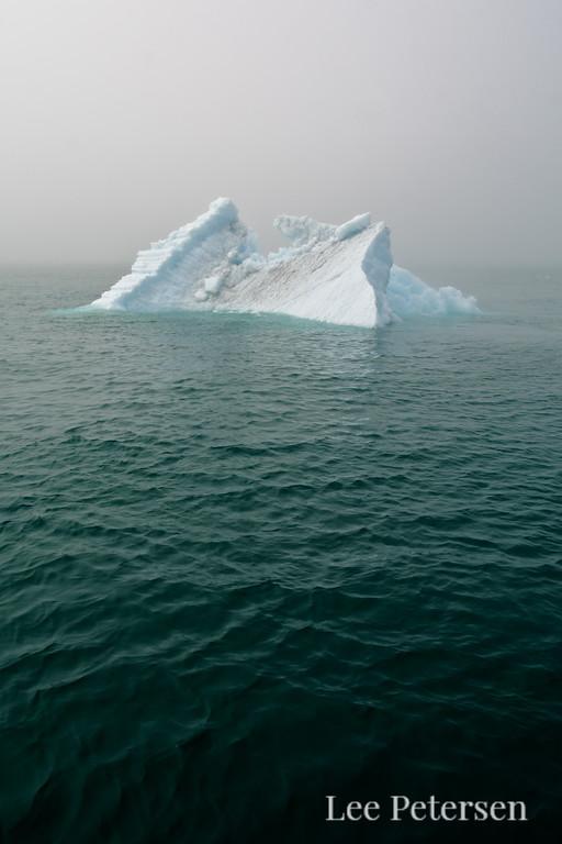 A lone iceberg in Prince William Sound near Glacier Island and the Columbia Glacier.