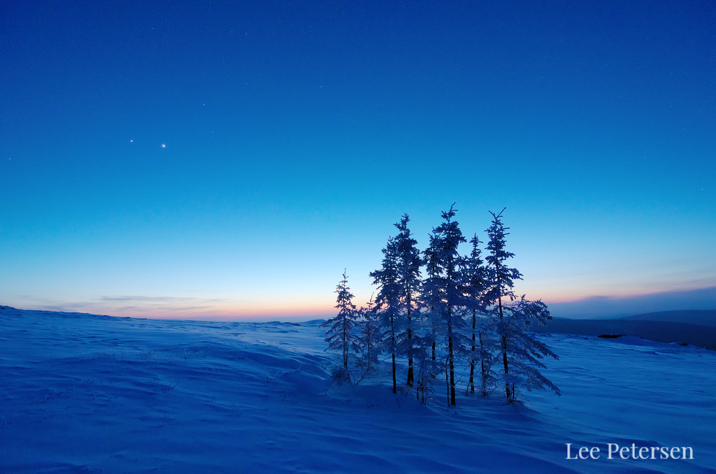 Jupter and Venus shining over a stand of trees on snow-covered Murphy Dome in Fairbanks, Alaska