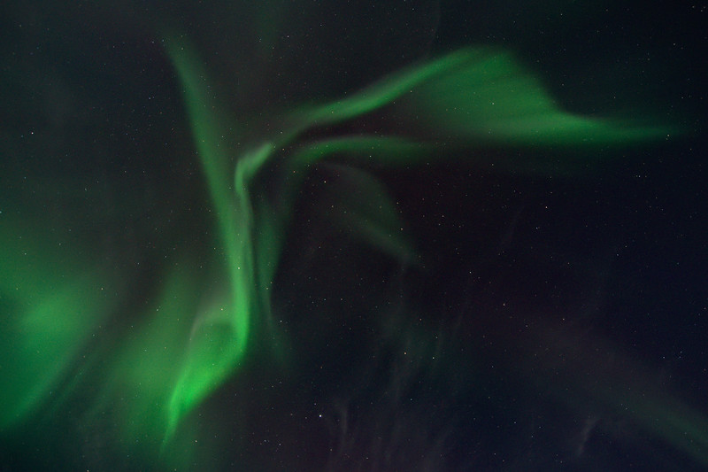 While driving back to Fairbanks from the White Mountains we saw the sky erupt from within the car. With the corona right overhead I pulled over as soon as possible near Chatanika and just caught the tail end of it.