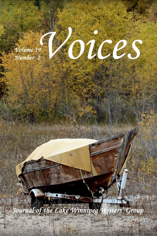 Voices 19 - 2 Cover