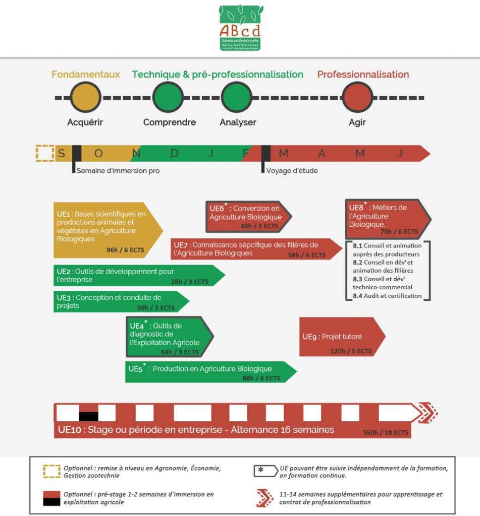 Licence ABCD schéma pedago