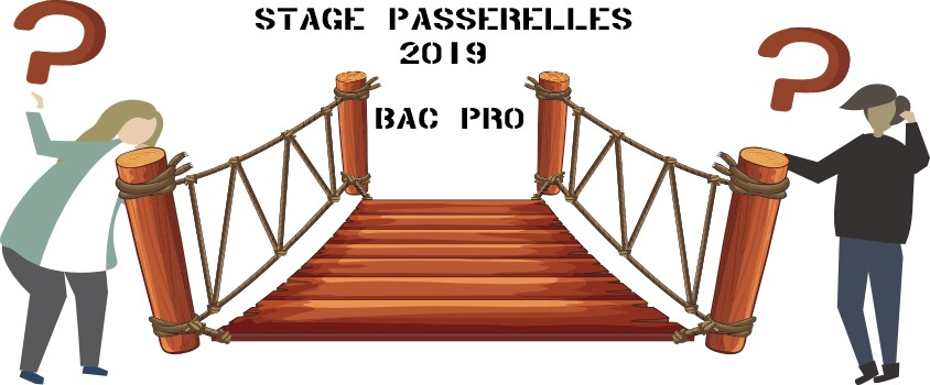 Stages « passerelles » 2019