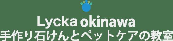 Lycka okinawa 手作り石けんとペットケアの教室