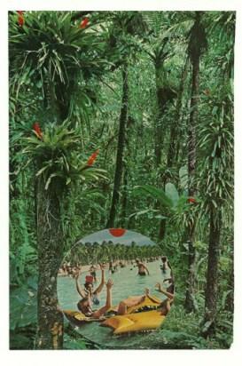 """""""Subtropic,"""" collage, 2015"""