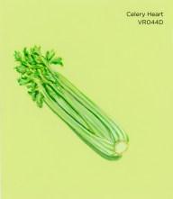 celery heart658