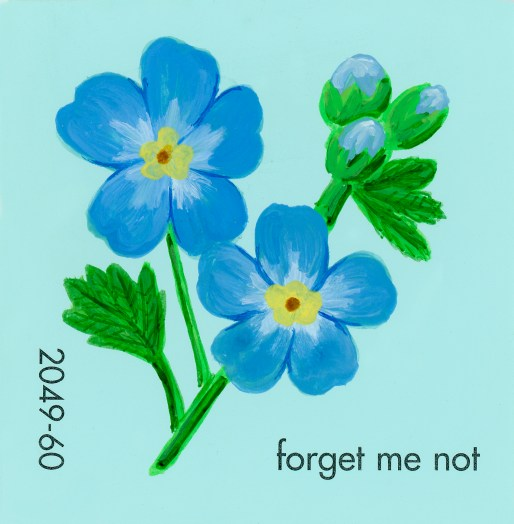 forget me not651
