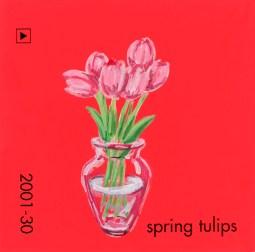 spring tulips652
