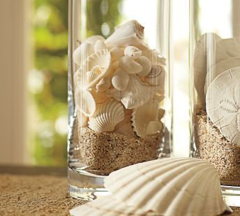 shells in jar