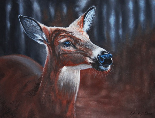 White Tailed Deer In Acrylic Lydia Joy Palmer
