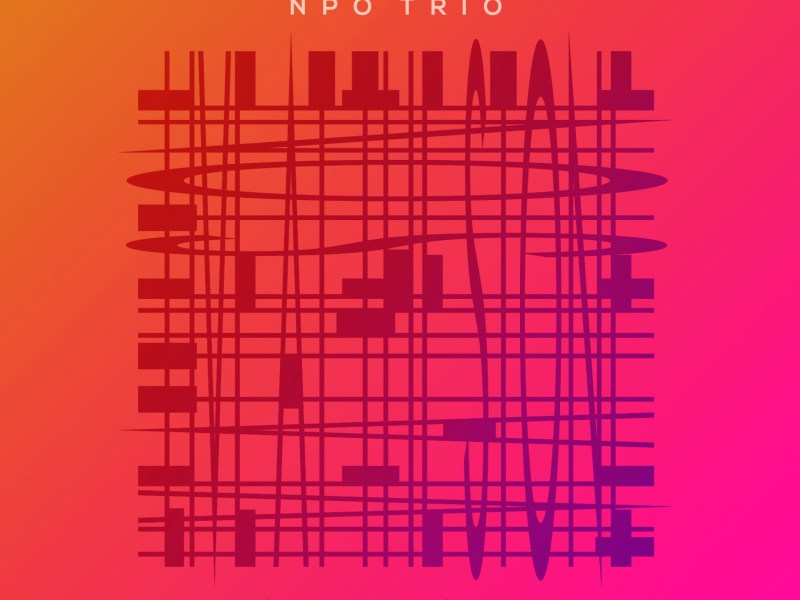 "REVIEW: Jazz Weekly Reviews Meg Okura's ""NPO Trio: Live at The Stone"""