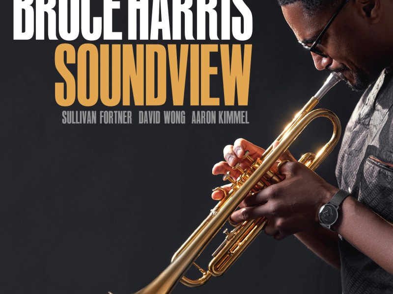 NEW RELEASE: Bruce Harris' SOUNDVIEW due out June 4, 2021 via Cellar Music Group