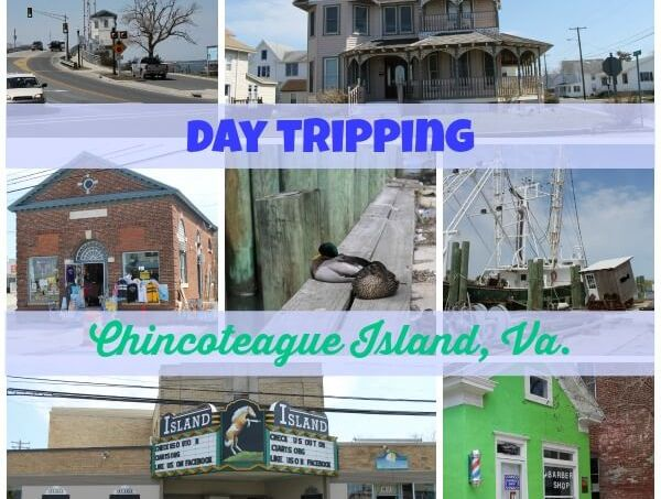 Day Tripping: Chincoteague Island, Va