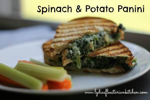 Vegan Sandwich Cookbook Review