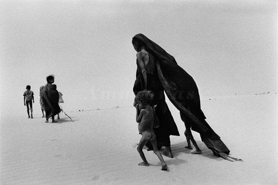 Region of Lake Faguibine. Mali . 1985