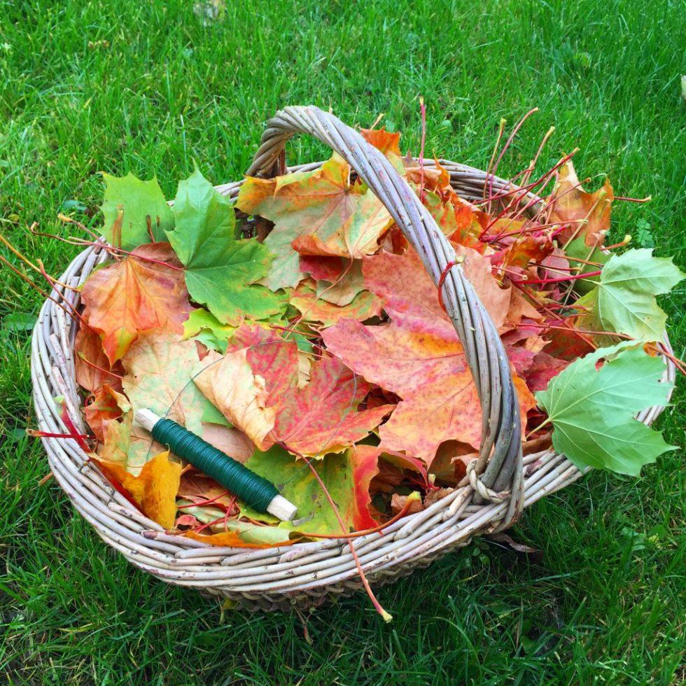 Ahornblade til efterårskrans