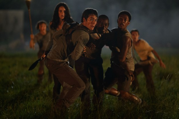 the maze runner teresa, thomas, alby