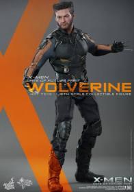 Hot Toys X-Men DOFP Wolverine - vertical ready