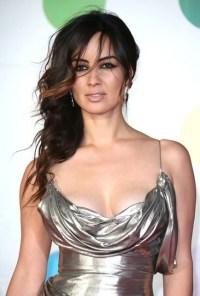 Berenice Marlohe - silver dress