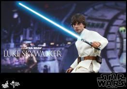 Hot Toys Star Wars Luke Skywalker - set for training
