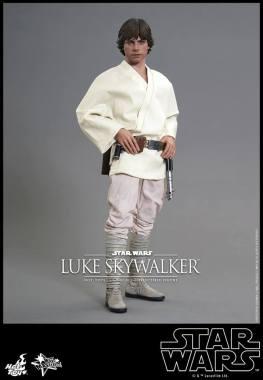 Hot Toys Star Wars Luke Skywalker - straight up