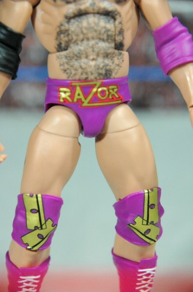 Razor Ramon Defining Moments - logo close up