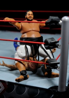 Yokozuna figure review Hall of Fame - banzai close up