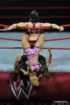 Emma WWE Mattel Basic 30 -tarantula