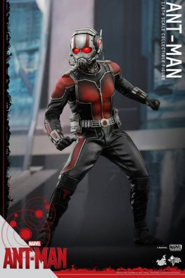Hot Toys Ant-Man figure -ready