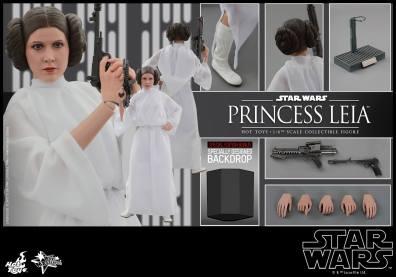 Hot Toys Star Wars Princess Leia -exclusive backdrop
