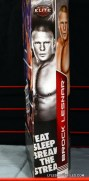 Mattel Brock Lesnar WWE figure - package side