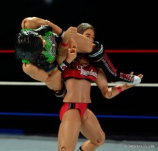 WWE Mattel Basic AJ Lee - arm bar to Nikki Bella2
