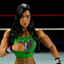 WWE Mattel Basic AJ Lee - close up2