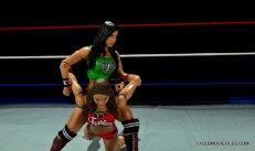 WWE Mattel Basic AJ Lee - stretching arms2
