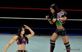WWE Mattel Basic AJ Lee - taunting Paige 2