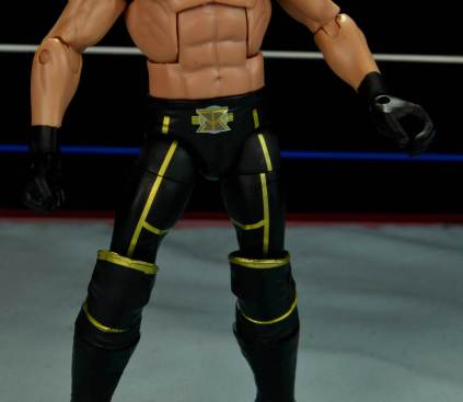 Seth Rollins Mattel exclusive - tight detailing