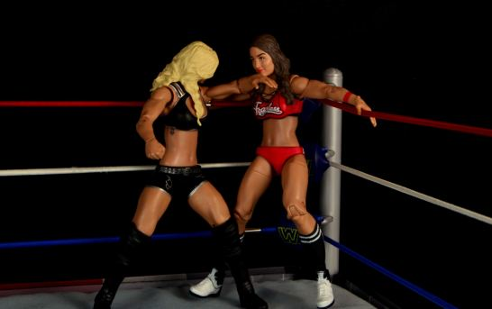 wwe-charlotte-figure-review-chopping-nikki-bella