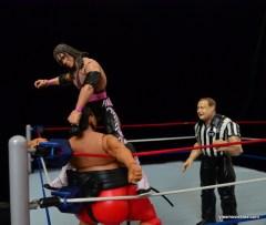 Wrestlemania 9 -Bret Hart top rope punching Yokozuna