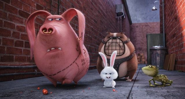 The Secret Life of Pets review - Tattoo, Snowball, Ripper and Dragon-min