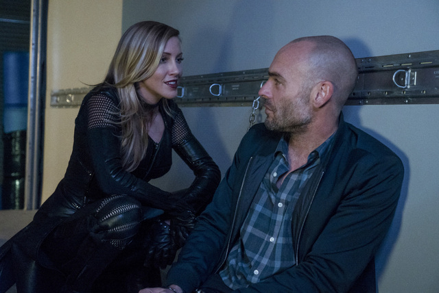 Arrow Missing - Black Siren and Quentin