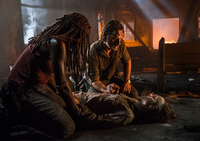 the-walking-dead-honor-michonne, rick with carl