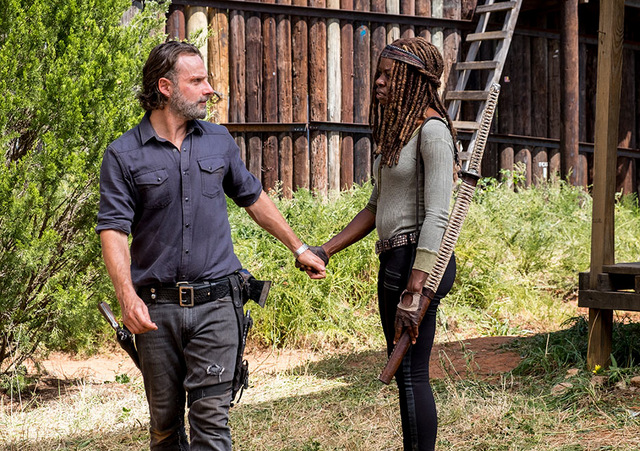 the walking dead the key review - rick and michonne